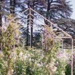 20190512-Festival-Jardin-Chaumont-sur-Loire_20190512_fuji_superia400_37_1600px-9.jpg
