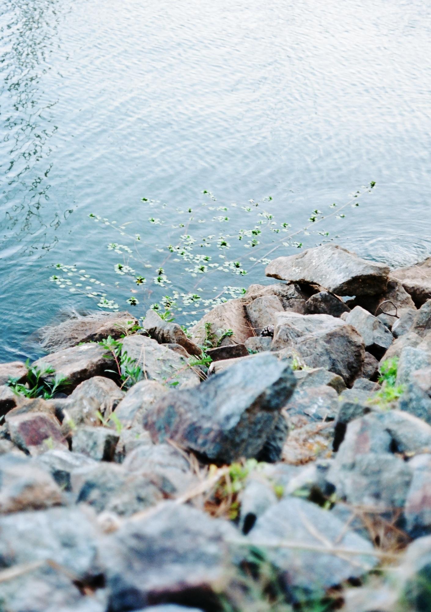 vert-1-0.jpg
