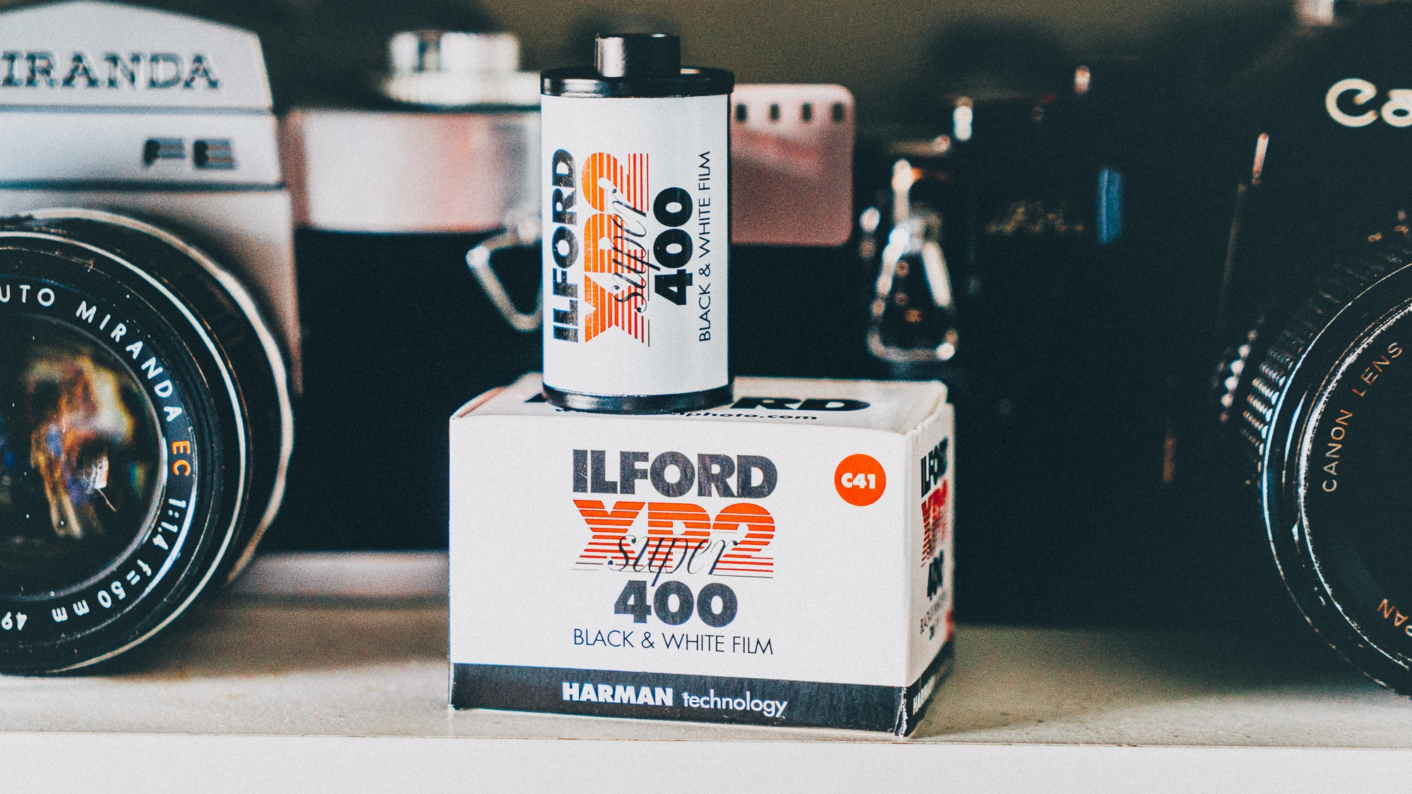 Débuter en photo noir et blanc avec la Ilford XP2