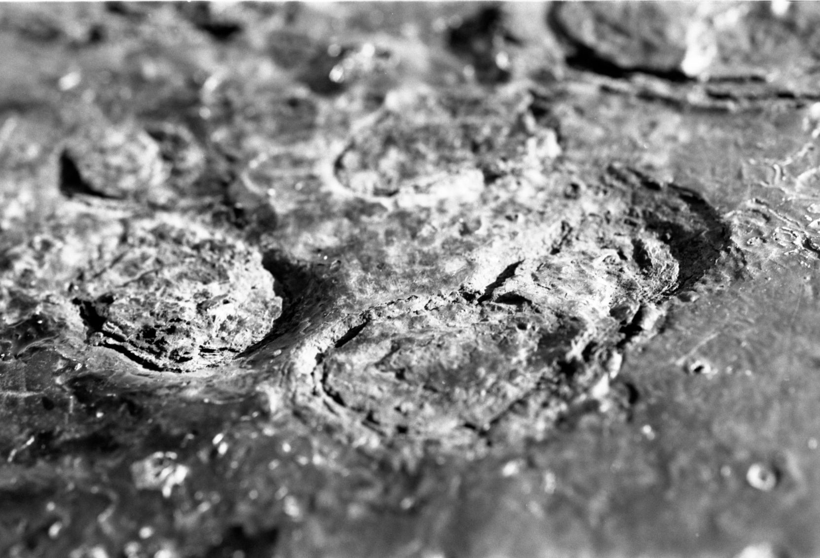 Textures Abstraites et flou de bouger